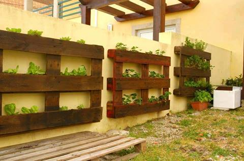 Best Bordure Jardin Avec Palette Images - House Design - marcomilone.com